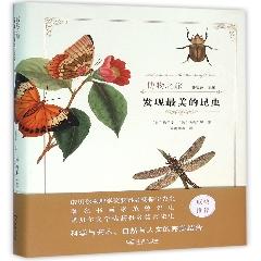 发现最美的昆虫※名社好书2017年4月