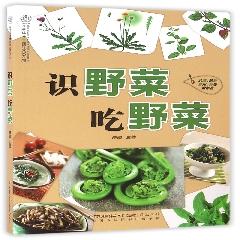 识野菜吃野菜(汉竹)※好书·钜惠购-2018贺年